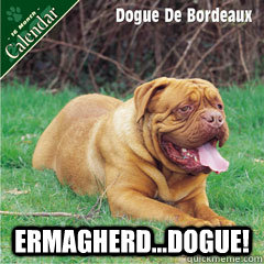 Ermagherd...Dogue! -  Ermagherd...Dogue!  Ermagherd...Dogue