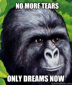 No more tears Only dreams now  gorilla munch