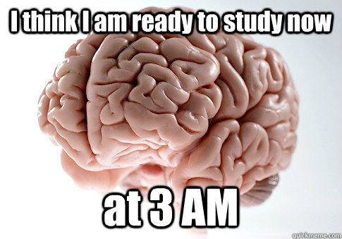I think I am ready to study now at 3 AM  - I think I am ready to study now at 3 AM   Scumbag Brain