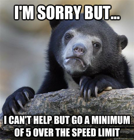 I'm sorry but... i can't help but go a minimum of 5 over the speed limit - I'm sorry but... i can't help but go a minimum of 5 over the speed limit  Confession Bear