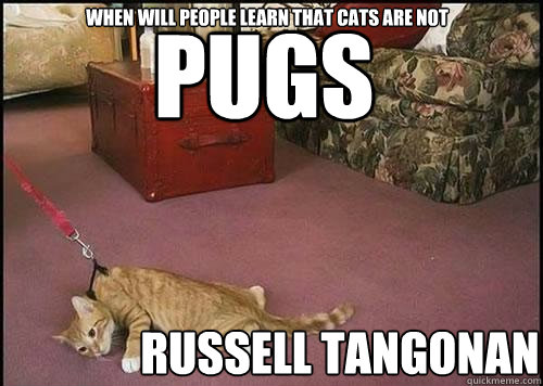 Pugs Russell Tangonan when will people learn that cats are not