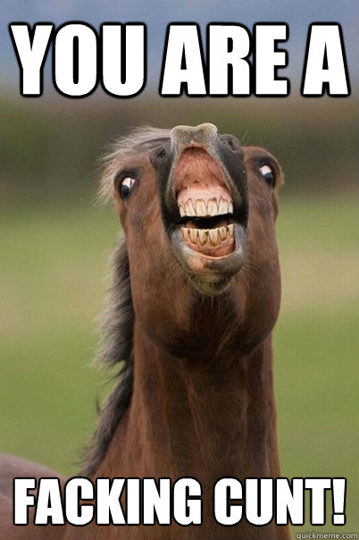 you are a facking cunt!   Derp Horse