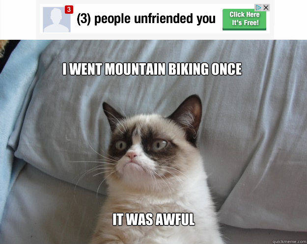 I went mountain biking once it was awful - I went mountain biking once it was awful  Grumpy Cat on Being Unfriended
