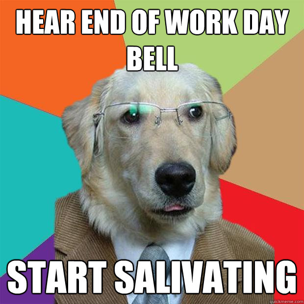 Hear End Of Work Day Bell Start Salivating Business Dog Quickmeme
