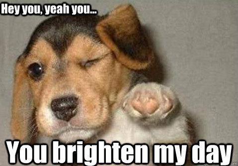 You brighten my day Hey you, yeah you...