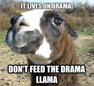 IT LIVES ON DRAMA DON'T FEED THE DRAMA LLAMA  Drama Llama