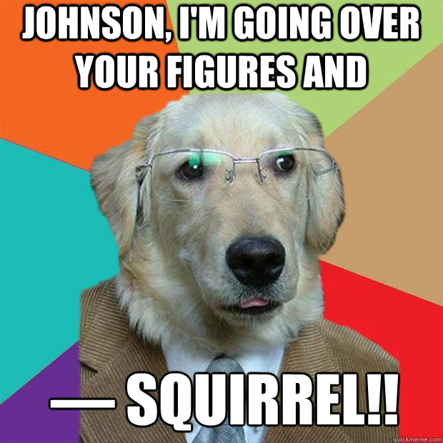Johnson, I'm going over your figures and —­­­ SQUIRREL!! - Johnson, I'm going over your figures and —­­­ SQUIRREL!!  Business Dog