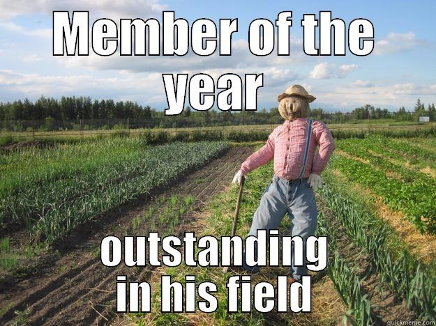 MEMBER OF THE YEAR OUTSTANDING IN HIS FIELD Scarecrow