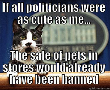 IF ALL POLITICIANS WERE AS CUTE AS ME... THE SALE OF PETS IN STORES WOULD ALREADY HAVE BEEN BANNED Misc