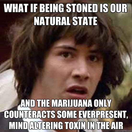 What if being stoned is our natural state and the marijuana only counteracts some everpresent, mind altering toxin in the air - What if being stoned is our natural state and the marijuana only counteracts some everpresent, mind altering toxin in the air  conspiracy keanu