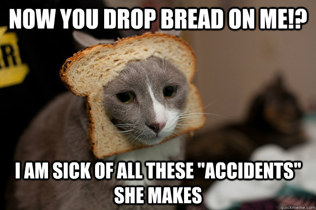 Now you drop bread on me!? I am sick of all these