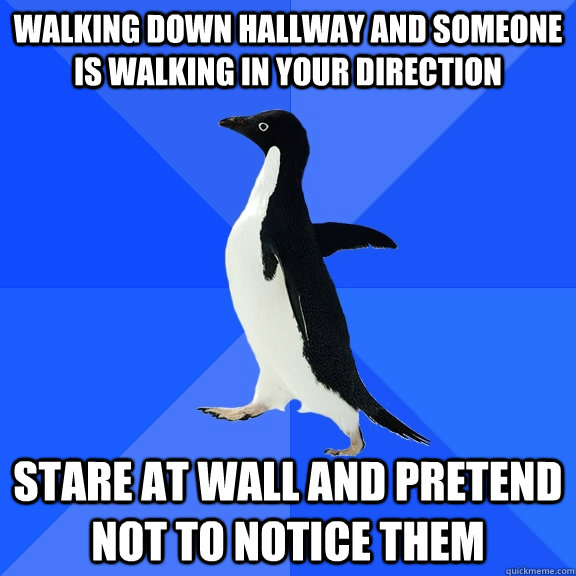 Walking down hallway and Someone is walking in your direction Stare at wall and pretend not to notice them - Walking down hallway and Someone is walking in your direction Stare at wall and pretend not to notice them  Socially Awkward Penguin