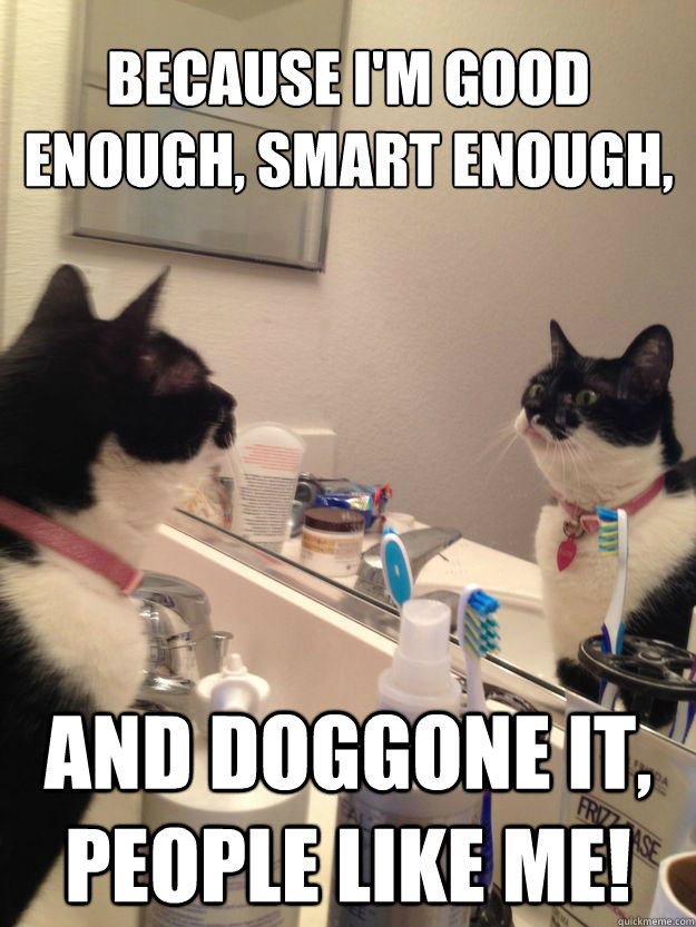 I m good enough i m smart enough gif