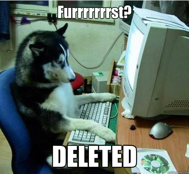 Furrrrrrrst? DELETED - Furrrrrrrst? DELETED  Disapproving Dog