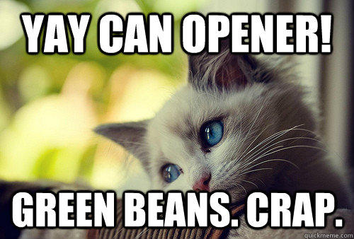 Yay can opener! Green beans. Crap.