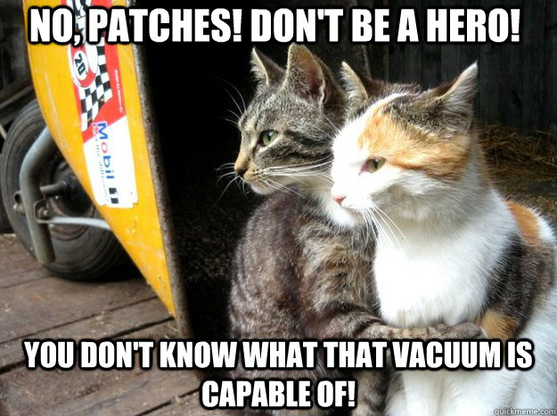 no, patches! don't be a hero! you don't know what that vacuum is capable of!