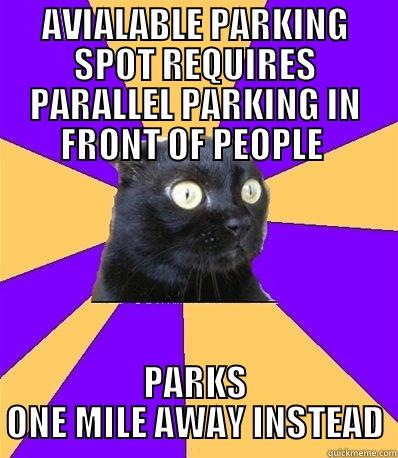 Anxiety Cat  - AVIALABLE PARKING SPOT REQUIRES PARALLEL PARKING IN FRONT OF PEOPLE  PARKS ONE MILE AWAY INSTEAD Misc