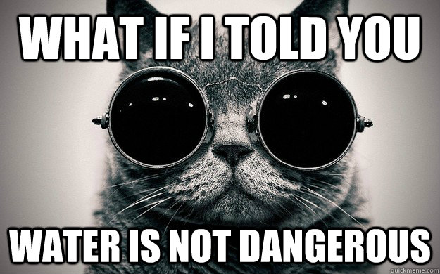 What if i told you Water is not dangerous - What if i told you Water is not dangerous  Morpheus Cat Facts