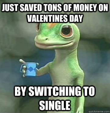 Just saved tons of money on Valentines Day  By switching to Single - Just saved tons of money on Valentines Day  By switching to Single  Geico
