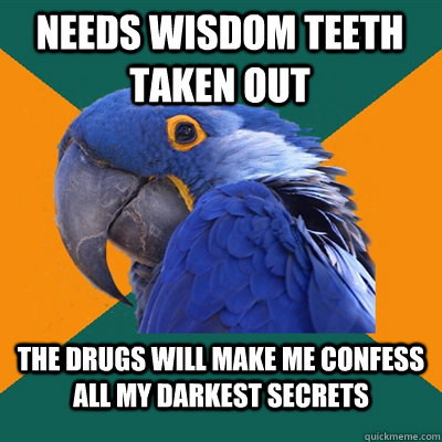 needs wisdom teeth taken out the drugs will make me confess all my darkest secrets - needs wisdom teeth taken out the drugs will make me confess all my darkest secrets  Paranoid Parrot