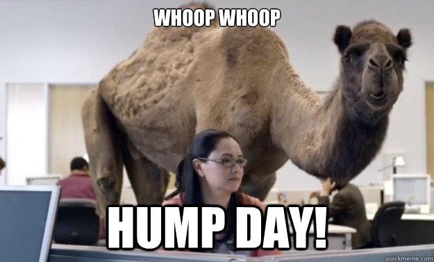 Whoop Whoop Hump Day!