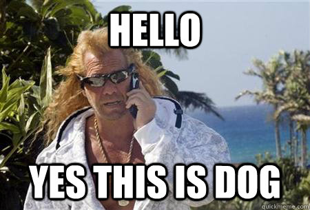 445327ba10a6edbd96ab80f94f2d859e14d45266d6e913727c5c2c6669c3e0a6 hello yes this is dog dog the bounty hunter quickmeme