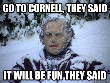 Go to Cornell, they said it will be fun they said