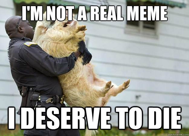 I'm not a real meme I deserve to die - I'm not a real meme I deserve to die  Misc