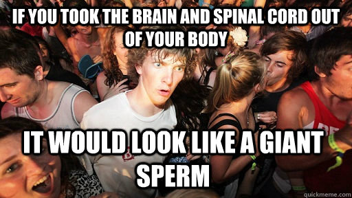 If you took the brain and spinal cord out of your body it would look like a giant sperm - If you took the brain and spinal cord out of your body it would look like a giant sperm  Sudden Clarity Clarence