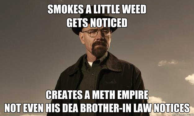 Smokes a little weed Gets noticed Creates a meth empire Not even his dea brother-in law notices - Smokes a little weed Gets noticed Creates a meth empire Not even his dea brother-in law notices  Breaking Bad Logic
