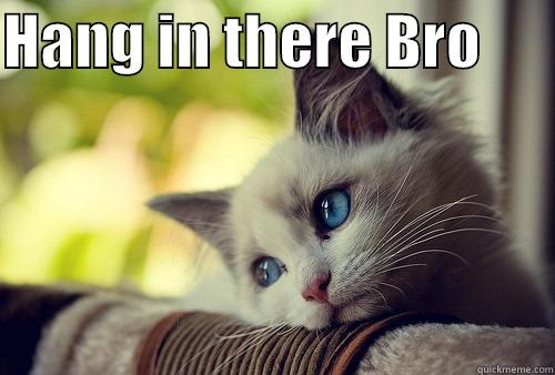 Lots of brolove - HANG IN THERE BRO        First World Problems Cat