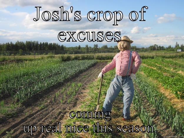 JOSH'S CROP OF EXCUSES COMING UP REAL NICE THIS SEASON. Scarecrow