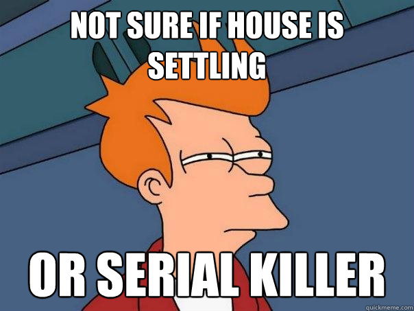 Not sure if house is settling or serial killer - Not sure if house is settling or serial killer  Futurama Fry