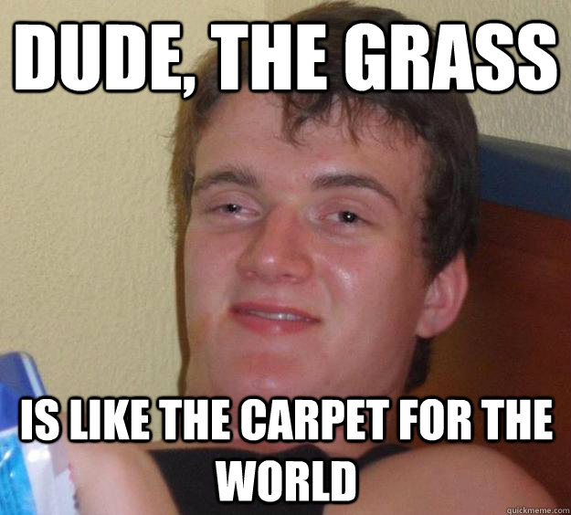Dude, the grass is like the carpet for the world - Dude, the grass is like the carpet for the world  10 Guy