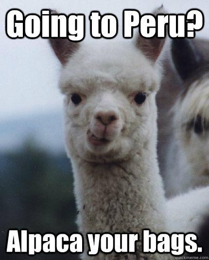 Going to Peru? Alpaca your bags. - Going to Peru? Alpaca your bags.  ALPACA