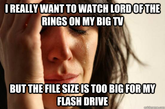 I really want to watch Lord of the Rings on my big TV But the file size is too big for my flash drive - I really want to watch Lord of the Rings on my big TV But the file size is too big for my flash drive  First World Problems