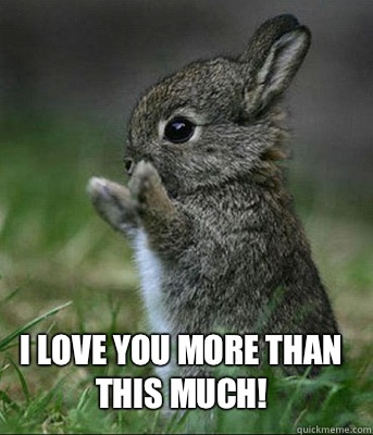 I love you more than this much! - I love you more than this much!  Cute bunny