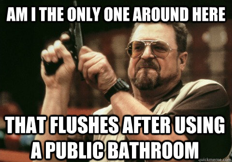 Am I the only one around here That flushes after using a public bathroom - Am I the only one around here That flushes after using a public bathroom  Am I the only one
