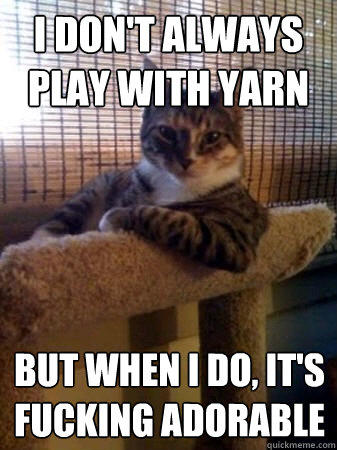 i don't always play with yarn but when i do, it's fucking adorable  The Most Interesting Cat in the World