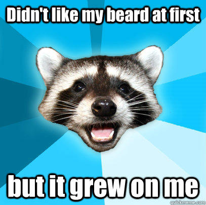 Didn't like my beard at first but it grew on me - Didn't like my beard at first but it grew on me  Lame Pun Coon