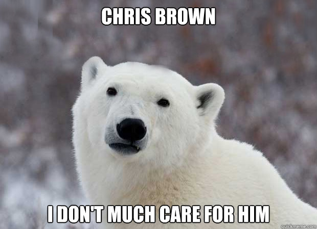 Chris Brown I don't much care for him - Chris Brown I don't much care for him  Popular Opinion Polar Bear