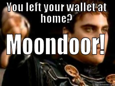 YOU LEFT YOUR WALLET AT HOME? MOONDOOR! Downvoting Roman