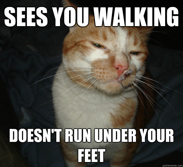 Sees you walking doesn't run under your feet