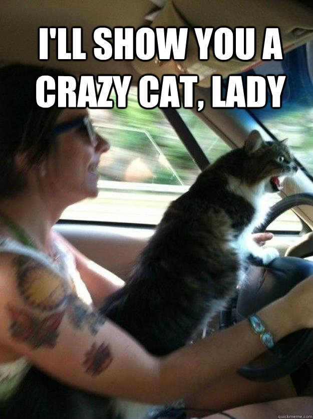 I'll show you a crazy cat, lady
