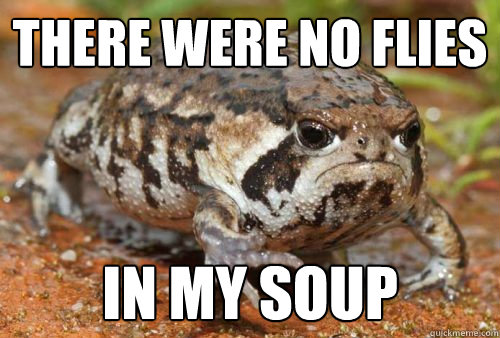 There were no flies  in my soup