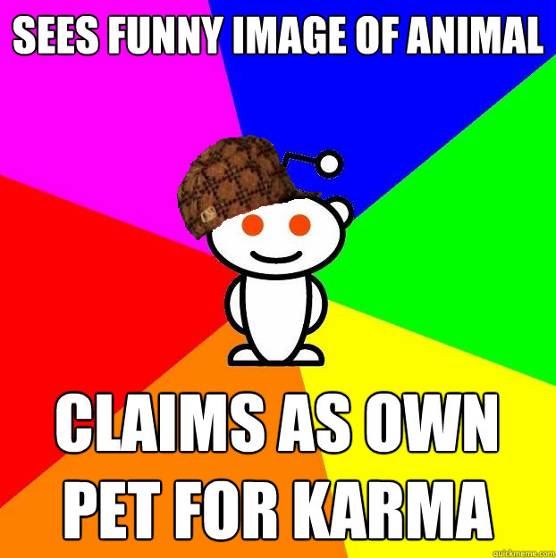 Sees funny image of animal Claims as own pet for karma - Sees funny image of animal Claims as own pet for karma  Scumbag Redditor