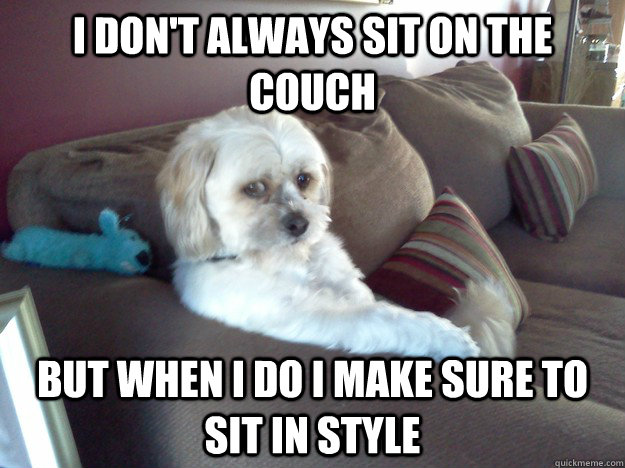 I don't always sit on the couch But when I do I make sure to sit in style  Most interesting dog in the world