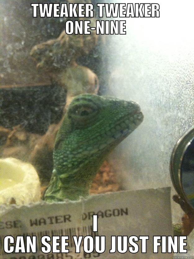 TWEAKER TWEAKER ONE-NINE I CAN SEE YOU JUST FINE Leery Lizard