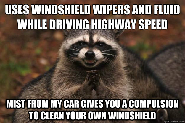 Uses Windshield Wipers and Fluid while driving highway speed mist from my car gives you a compulsion to clean your own windshield - Uses Windshield Wipers and Fluid while driving highway speed mist from my car gives you a compulsion to clean your own windshield  Evil Plotting Raccoon