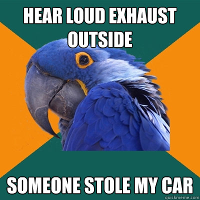 hear loud exhaust outside someone stole my car - hear loud exhaust outside someone stole my car  Paranoid Parrot